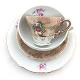 Vintage porseleinen Thun en Marie Antoinette kop en schotel - beige | Sprinkel + Hop